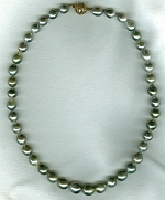 Silver gray South Sea Pearl necklace CC6201